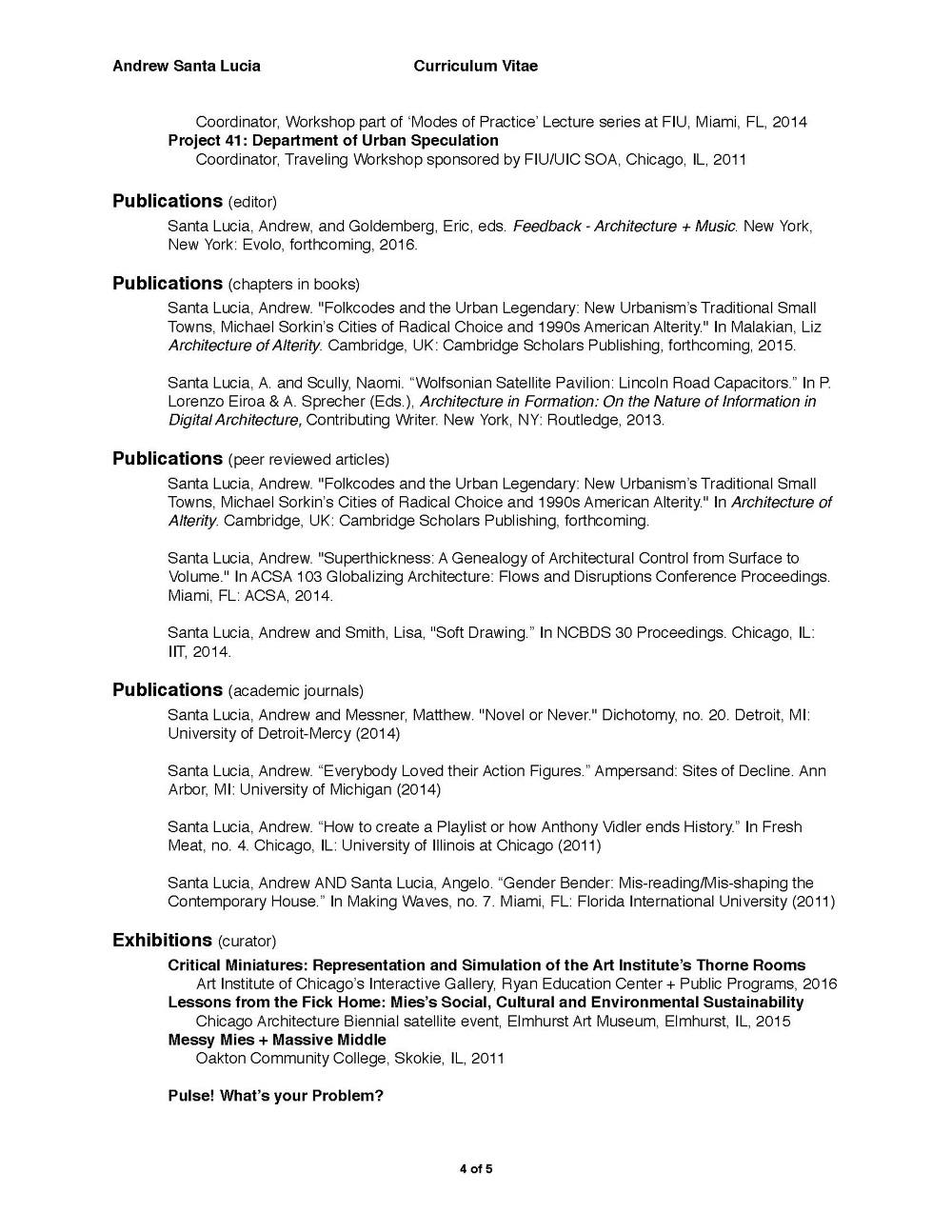 Combination Style Resume PDF Free Download
